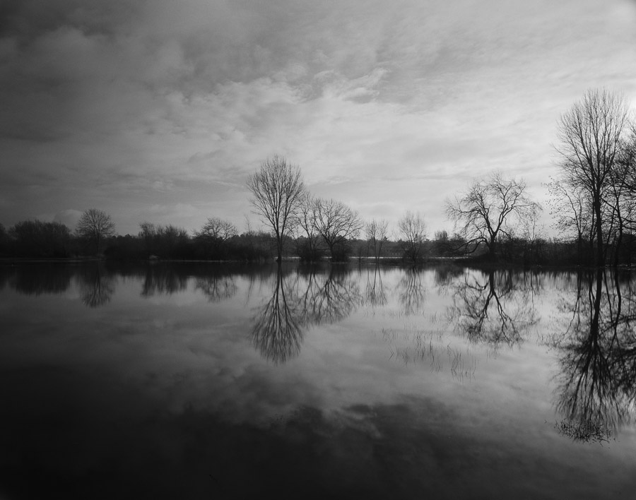 20201229_Flooded_Meadow_75mm_FP4_HC110B_001_web