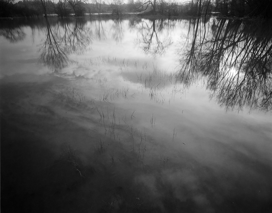 20201229_Flooded_Meadow_75mm_FP4_HC110B_002_web
