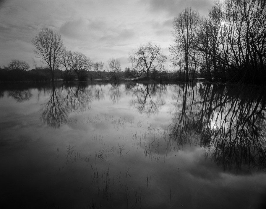 20201229_Flooded_Meadow_75mm_FP4_HC110B_003_web