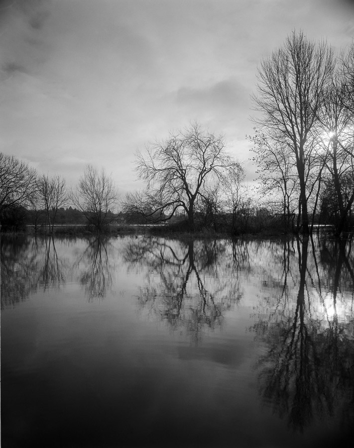 20201229_Flooded_Meadow_75mm_FP4_HC110B_004_web